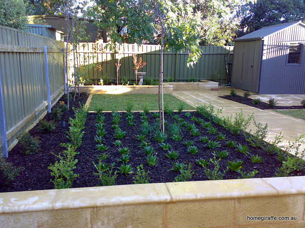Garden Landscaping Adelaide Landscaping burnside sa red earth landscape construction 0414461738 as soon as we spoke to patrick from red earth landscape construction we knew he was the landscaper for us he had confidence in transforming our small workwithnaturefo