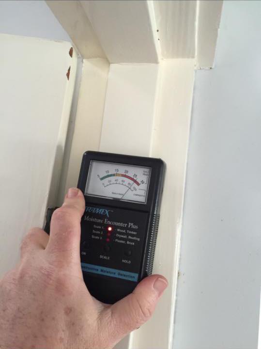 pest control detection