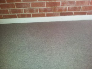 Carpet Cleaners Mawson Lakes Zig Zag Carpet Cleaning